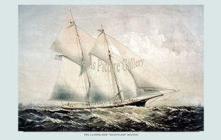 Clipper Ship - Dauntless